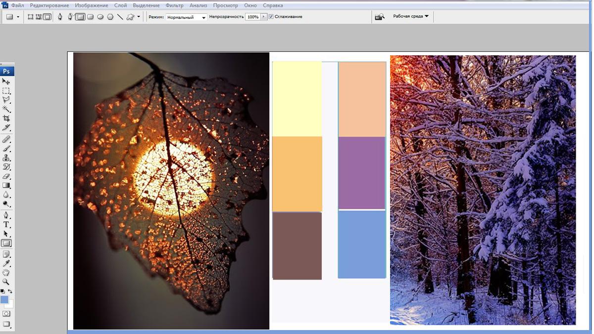 Программа Adobe Color CC