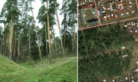 Ленинский парк города Сарапула