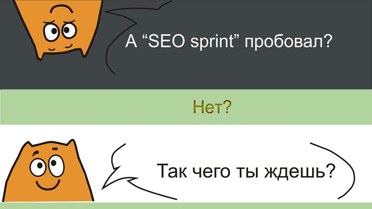 Seo sprint . Отзыв о заработке